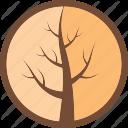 Bois du Monde Logo